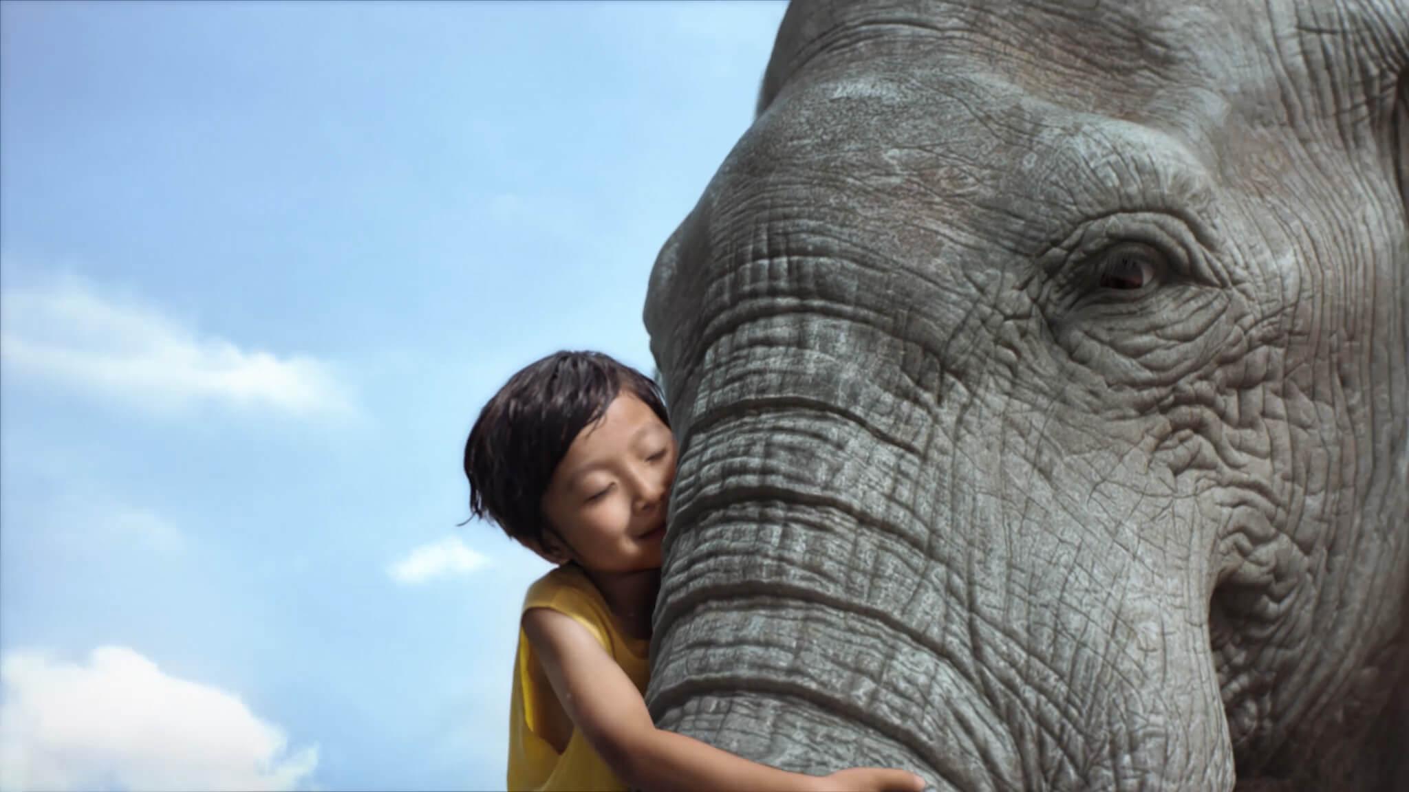 伊利QQ星-大象篇